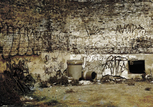 F Gomes_grafitti trash.jpg