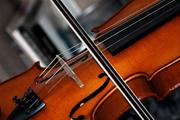JanG a19 violin