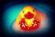 JanG a4 duck