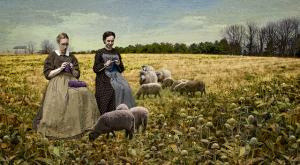 MLR 04_farm yarn