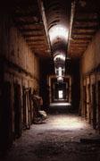 forgotten hallway esp anita fanic