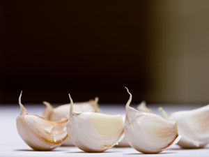 jls-garlicgeese