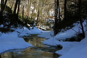 snow pics_rrk_stream from dingman falls