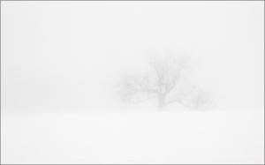snow_marlene mendez_bristol rd_7105_v2