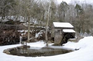 snowshollidaycuttaloosafarm