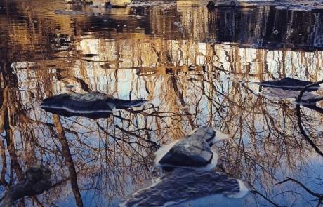 stritz-lower-gwynedd-park-stream