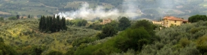 """view from San Casciano 0470 """"Tuscan Summer"""""""