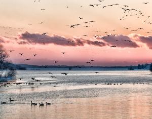 Sunset over Lake Galena-2