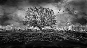 Ghost Farm_Mickie Rosen